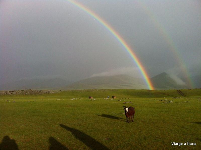 Mongolia8