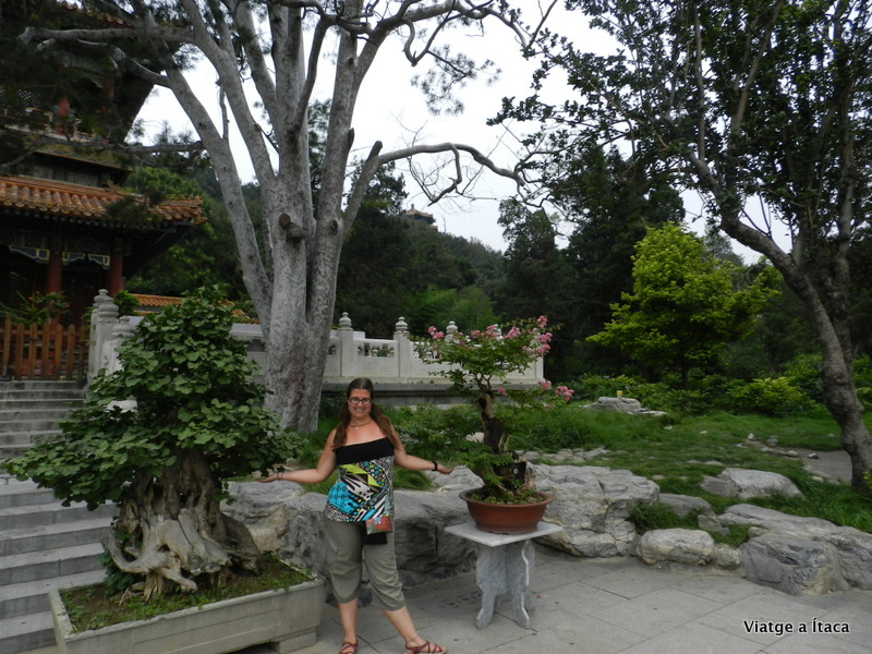 Jinshan Park1