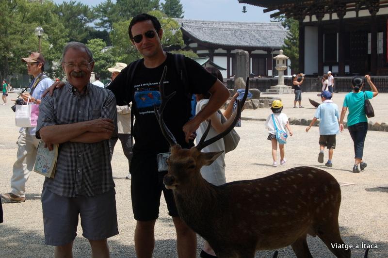 Nara2