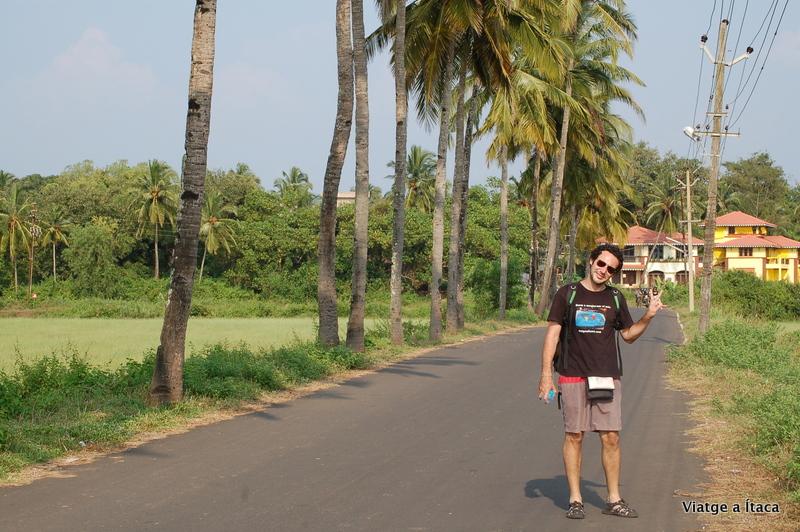 Goa_Benaulim14
