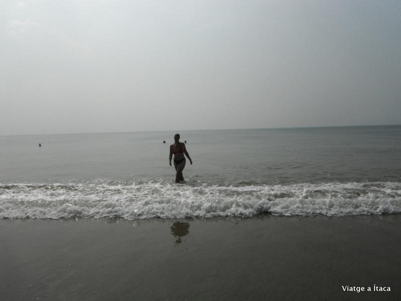 Goa_Benaulim15