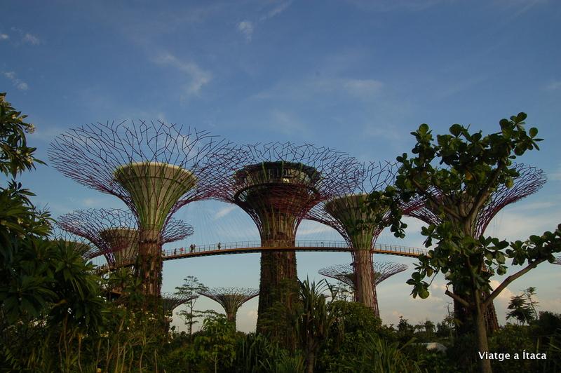 Singapur23