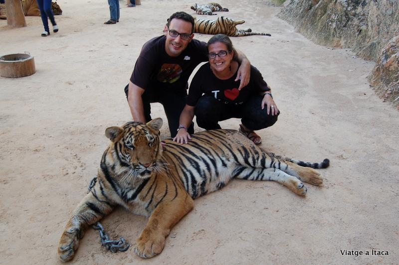 TigerTemple2