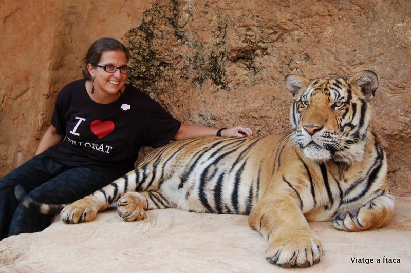 TigerTemple3