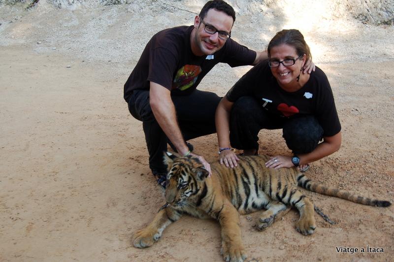 TigerTemple4
