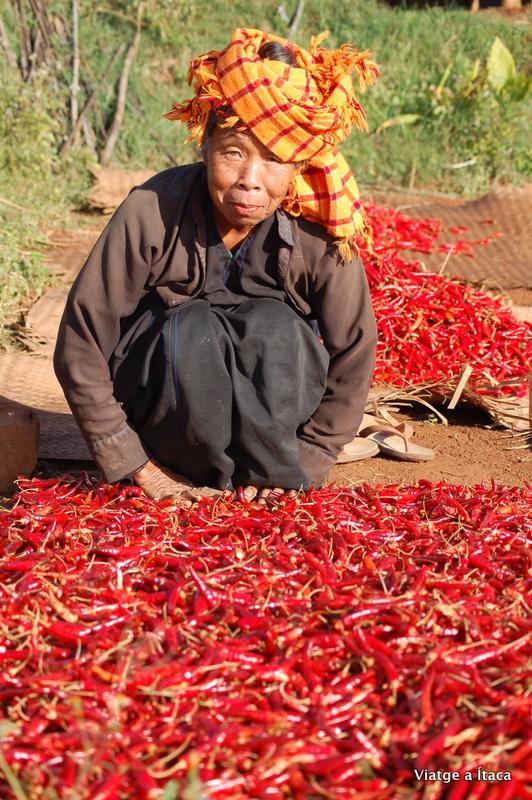 Myanmar5