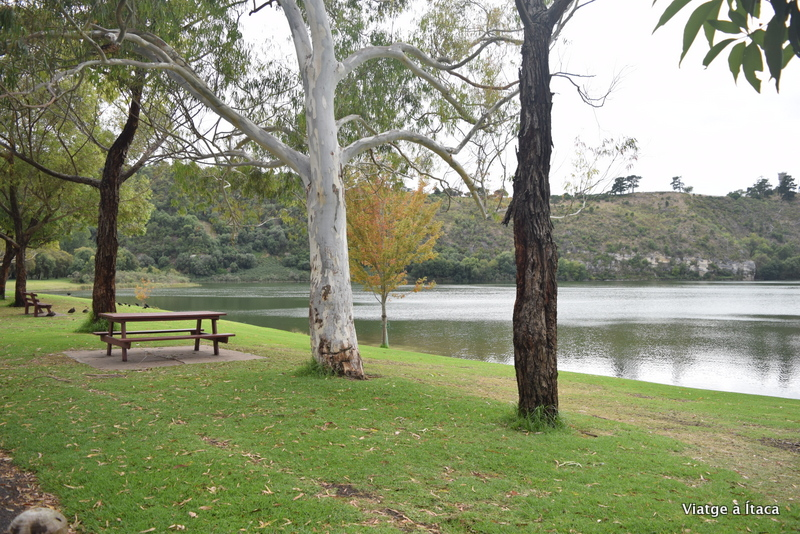 MountGambier14