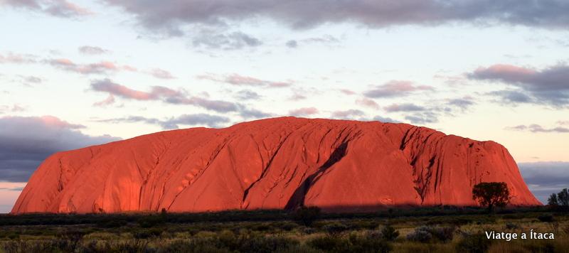 Uluru19