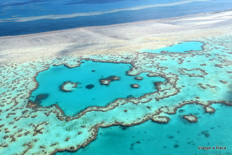 GreatBarrierReef13