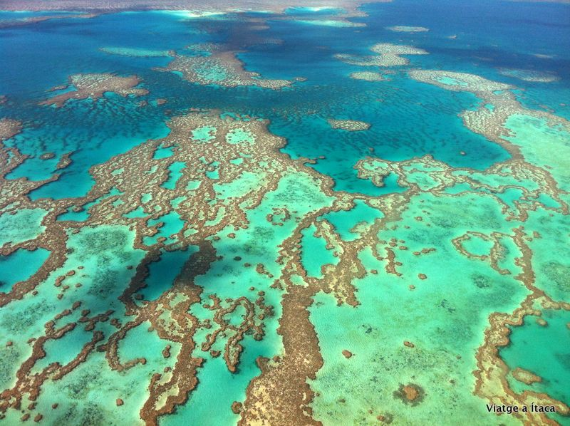 GreatBarrierReef28