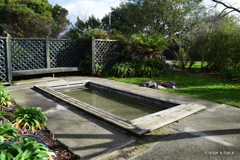 Rotorua10