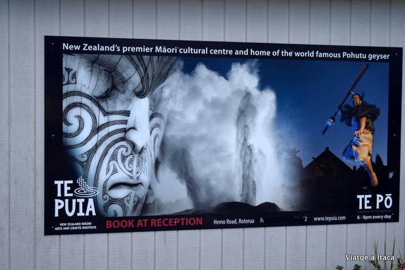 Rotorua14