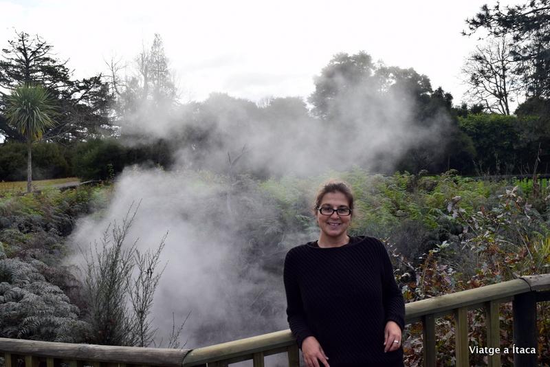 Rotorua15