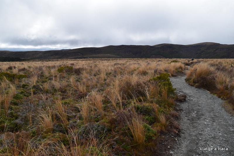 TongariroNP13