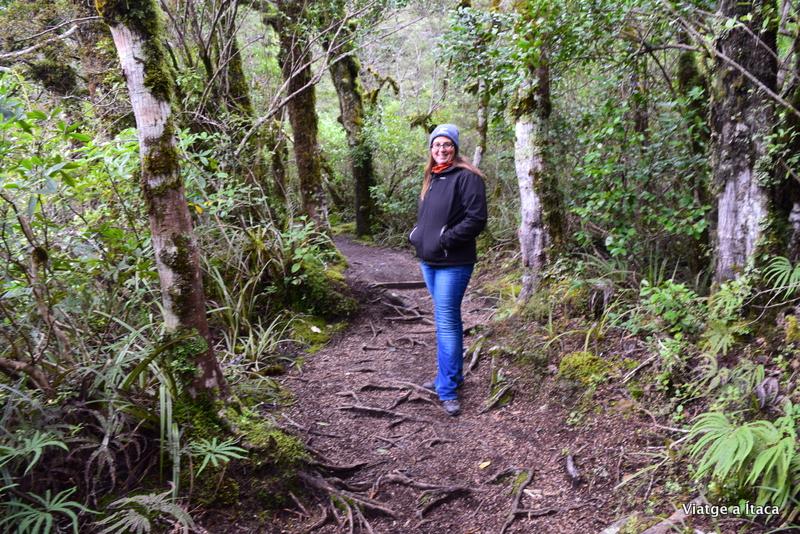 TongariroNP5