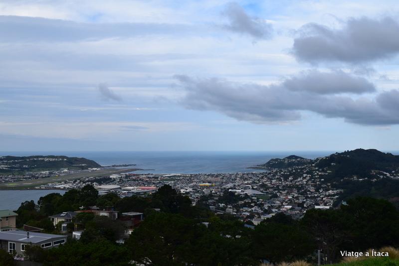 Wellington5