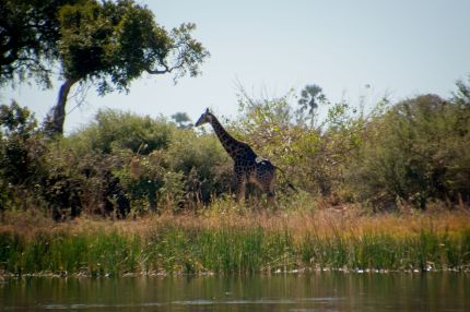 Botswana11