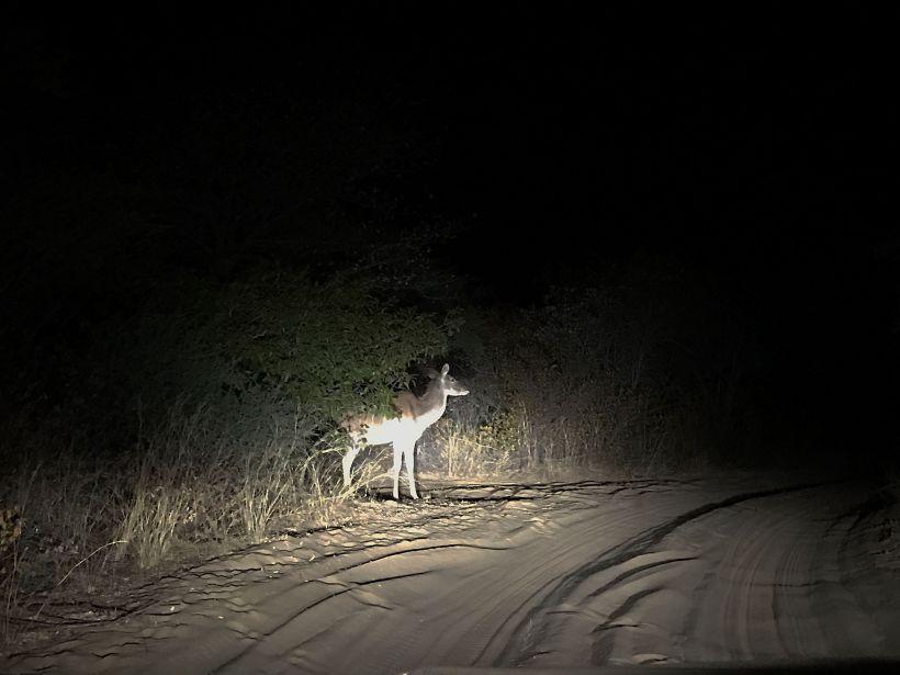 Botswana12