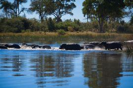 Botswana13