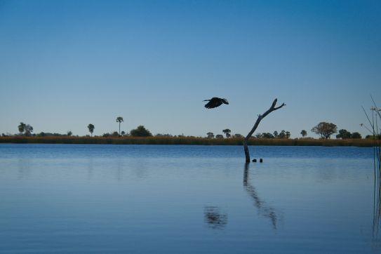 Botswana17