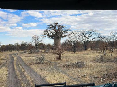 Botswana28