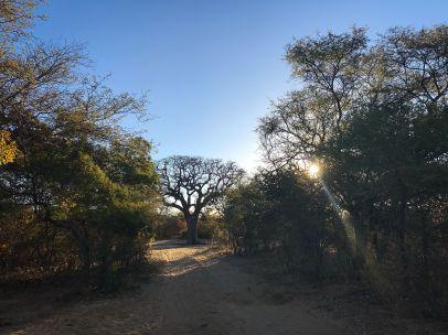 Botswana5