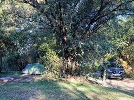 Ngepi Camp